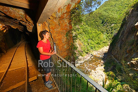 Waitawheta Windows Walk Track through historic goldmining tunnel, high above the Waitawheta River gorge. Woodstock Gold Mining Company, Karangahake, Hauraki District, Waikato Region, New Zealand (NZ) stock photo.