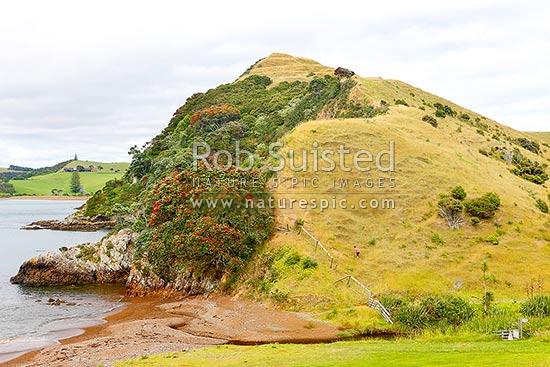 Rangihoua Pa site, where Ruatara gifted Marsden the land for the Marsden Cross settlement in Hohi (Oihi) Bay, Kerikeri, Far North District, Northland Region, New Zealand (NZ) stock photo.
