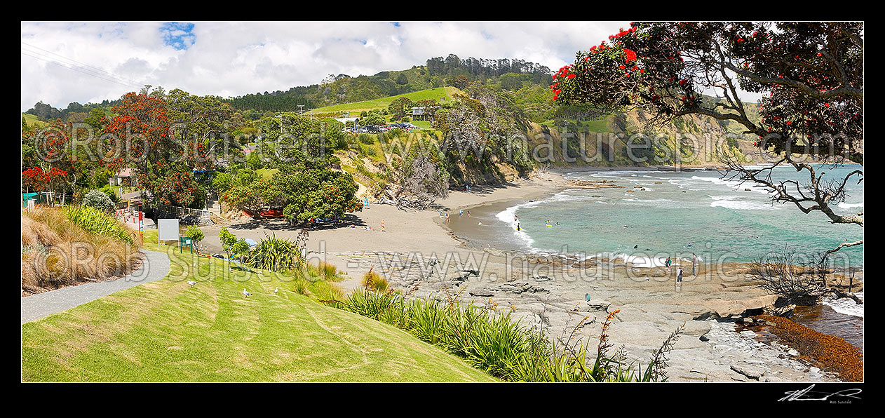 Image of Goat Island (Cape Rodney-Okakari Point) Marine Reserve and beach with summer visitors. Panorama, Leigh, Rodney District, Auckland Region, New Zealand (NZ) stock photo image