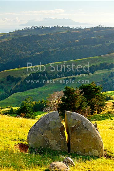 Split rock in farmland, below a distant Hauturu Little Barrier Island, Leigh, Rodney District, Auckland Region, New Zealand (NZ) stock photo.