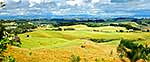 Waikato hill country panorama