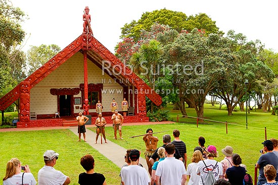 Maori warrior performers challenging and welcoming visitors to Te Whare Runanga at the Waitangi Treaty Grounds Te Tiriti o Waitangi, Paihia, Bay of Islands, Far North District, Northland Region, New Zealand (NZ) stock photo.