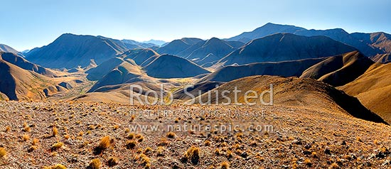 Molesworth landscape, Guide River and Barefell Pass left, Half Moon Stream centre and Dillion Cone (2173m right). Panorama, Molesworth Station, Marlborough District, Marlborough Region, New Zealand (NZ) stock photo.