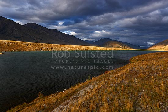 Bowscale Tarn at Sedgemere Tarns, with moody evening light looking down the Travellers Valley. Tarndale, Molesworth Station, Marlborough District, Marlborough Region, New Zealand (NZ) stock photo.