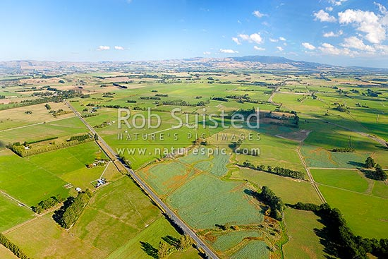 Southern Wairarapa farmland, with Aorangi Ranges and Mt Ross (981m) beyond. Aerial photo near Kaiwaiwai, Featherston, South Wairarapa District, Wellington Region, New Zealand (NZ) stock photo.