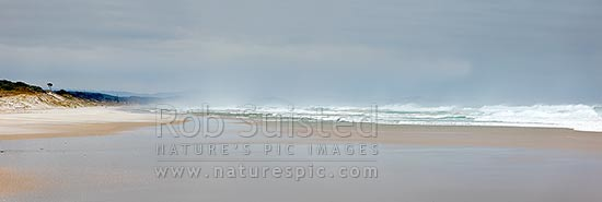 Pakiri Beach during a good ocean swell and surf. Panorama looking north west, Pakiri Beach, Rodney District, Auckland Region, New Zealand (NZ) stock photo.