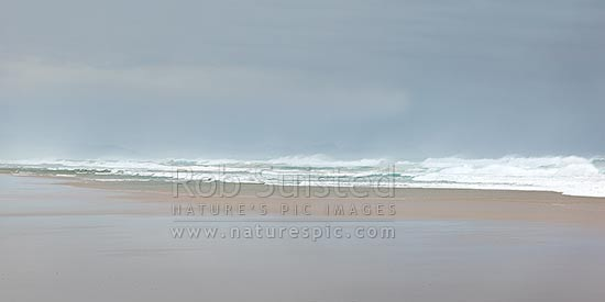 Pakiri Beach during a good ocean swell and with a good surf breaking. Panorama, Pakiri Beach, Rodney District, Auckland Region, New Zealand (NZ) stock photo.