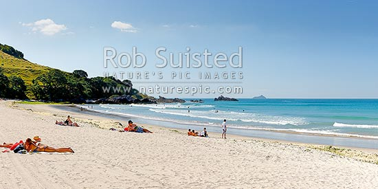 Mount Maunganui beach panorama, with people sunbathing and swimming, and distant Karewa Island (centre right), Bay of Plenty, Mount Maunganui, Tauranga District, Bay of Plenty Region, New Zealand (NZ) stock photo.
