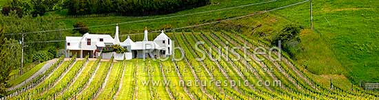 Coleraine House or 'Buck House' landmark amongst vineyards of Te Mata Estate. House designed by Ian Athfield & built 1980. Panorama, Havelock North, Hastings District, Hawke's Bay Region, New Zealand (NZ) stock photo.