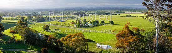 Havelock North Panorama looking across vineyards on the Ngaruroro and Tutaekuri River plains, with Coleraine House or 'Buck House' landmark amongst vineyards of Te Mata Estate centre, Havelock North, Hastings District, Hawke's Bay Region, New Zealand (NZ) stock photo.