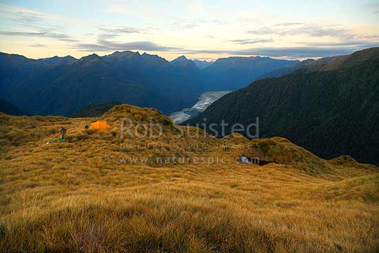 Alpine camping on the Thomas Range, high above the Haast River Valley and Bragg Creek, at sundown, South Westland wilderness, Haast, Westland District, West Coast Region, New Zealand (NZ) stock photo.