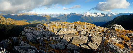 Haast River Valley from the Thomas Range. Mt Brewster (2516m) distant centre. Stunning evening panorama over South Westland wilderness, Haast, Westland District, West Coast Region, New Zealand (NZ) stock photo.