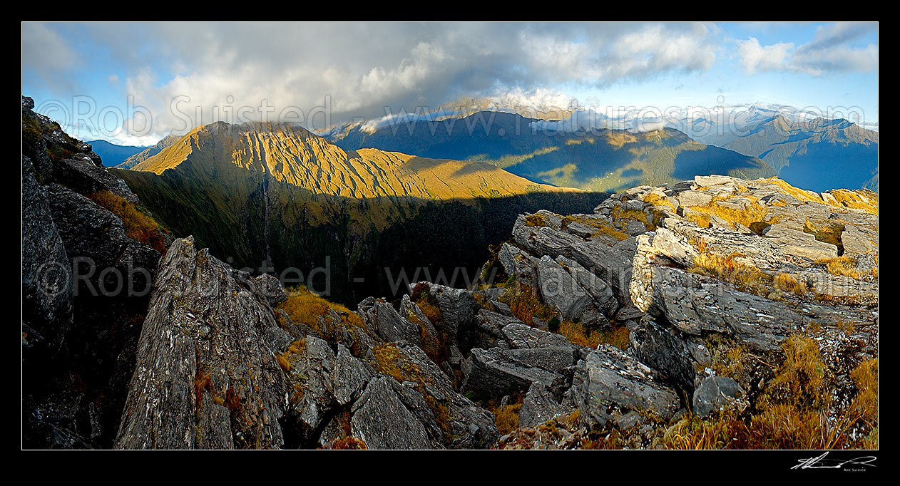 Image of Mt Swindle (1588m) at left, high above the Haast River Valley (right) and Cuttance Ridge (centre). Stunning evening panorama over South Westland wilderness, Haast, Westland District, West Coast Region, New Zealand (NZ) stock photo image