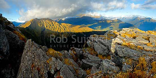 Mt Swindle (1588m) at left, high above the Haast River Valley (right) and Cuttance Ridge (centre). Stunning evening panorama over South Westland wilderness, Haast, Westland District, West Coast Region, New Zealand (NZ) stock photo.
