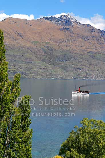 TSS Earnslaw, historic steamship on Lake Wakatipu, returning from Walter Peak Station. Working since 1912, Queenstown, Queenstown Lakes District, Otago Region, New Zealand (NZ) stock photo.