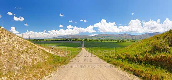 Central Otago crossroads amongst lush farmland and grazing stock. Dunstan Mountains and Lauder Creek behind. Panorama, Becks, Central Otago District, Otago Region, New Zealand (NZ) stock photo.