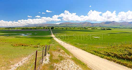 Central Otago crossroads amongst lush grass farmland and grazing stock. Dunstan Mountains and Lauder Creek behind. Panorama, Becks, Central Otago District, Otago Region, New Zealand (NZ) stock photo.