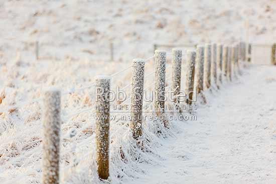 Winter snowfall on eight (8) wire farm fence, Canaan Downs, Tasman ...