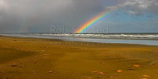 Oreti Beach, sand dunes and rainbow at Waimatuku Stream mouth, between Invercargill and Riverton. Panorama, Oreti Beach, Southland District, Southland Region, New Zealand (NZ) stock photo.