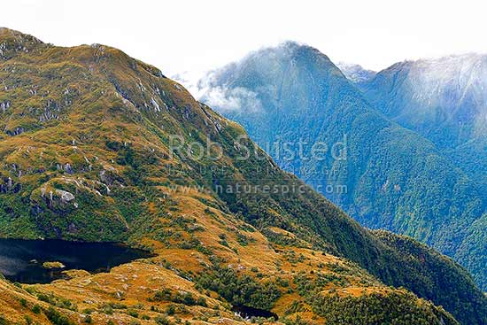 Edith River tops and tarns, looking across the Edith River Valley to Impossible Creek (right), Glaisnock Widlerness Area, Fiordland National Park, Southland District, Southland Region, New Zealand (NZ) stock photo.