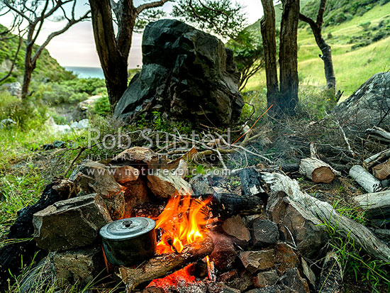 Campfire used to boil the billy for a cup of billy tea at a campsite nestled on the coastal bush edge at twilight (Remutaka, Rimutaka), Remutaka Forest Park, South Wairarapa District, Wellington Region, New Zealand (NZ) stock photo.