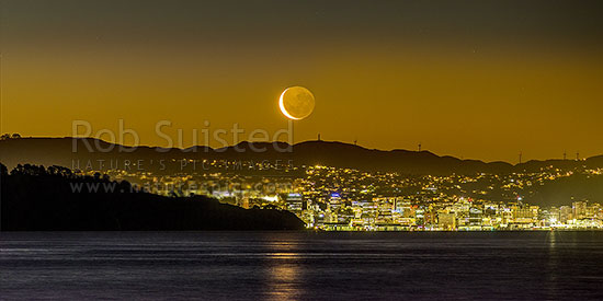 Wellington City panorama with setting moon above. Seen from eastern harbour. Point Halswell centre, Project West Wind wind turbines beyond. Waning crescent moon phase, Wellington, Hutt City District, Wellington Region, New Zealand (NZ) stock photo.