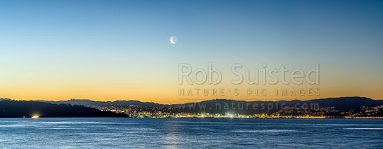 Wellington City twilight panorama with setting moon above. Seen from eastern harbour. Point Halswell centre, Project West Wind wind turbines beyond. Waning crescent moon phase, Wellington, Hutt City District, Wellington Region, New Zealand (NZ) stock photo.