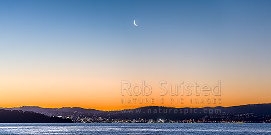 Wellington city sunset panorama with setting moon above the city. Seen from eastern harbour. Point Halswell left, Project West Wind wind turbines above the CBD. Waning crescent moon phase, Wellington, Hutt City District, Wellington Region, New Zealand (NZ) stock photo.