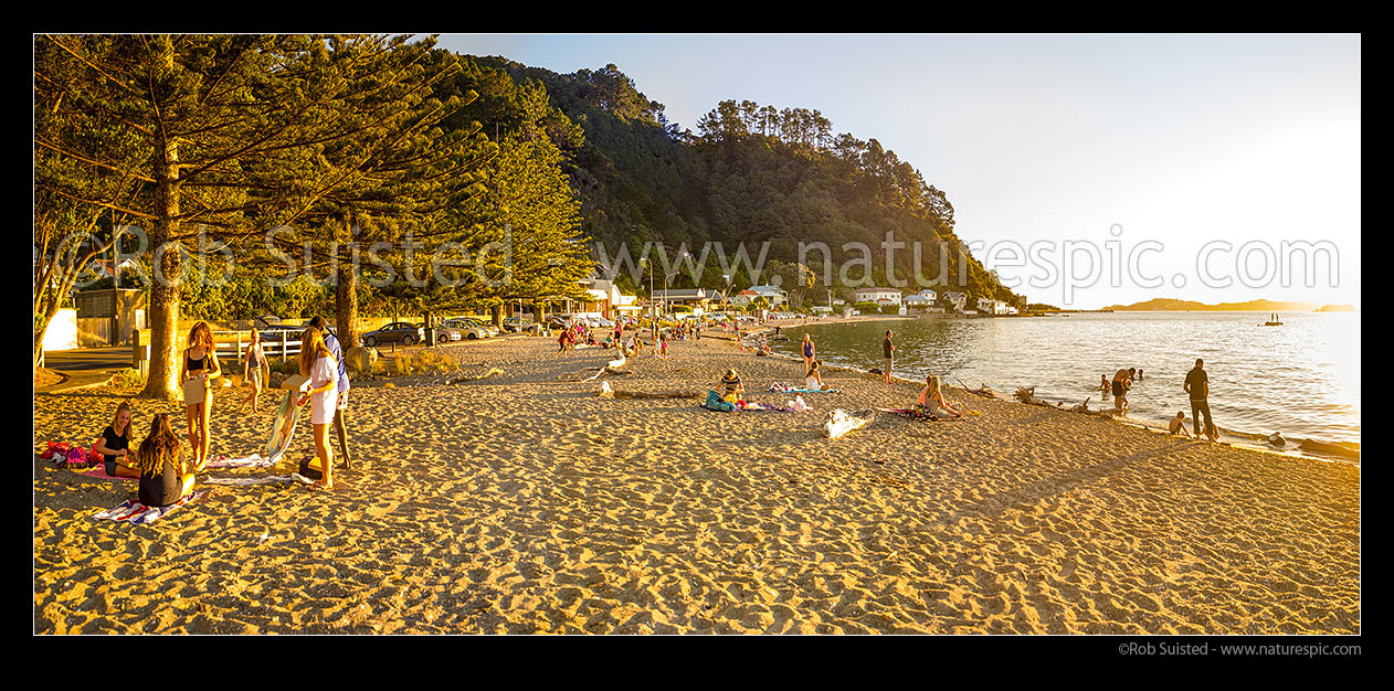 Image of Days Bay Beach with summer evening picnics, swimming and sunbathing in the late afternoon sun. Panorama with Wellington Harbour and Eastbourne far right, Days Bay, Hutt City District, Wellington Region, New Zealand (NZ) stock photo image
