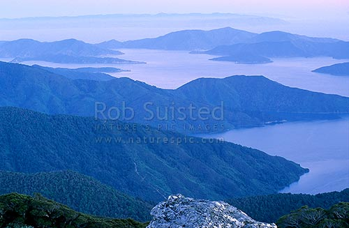 Looking over Queen Charlotte Sound to Arapaoa (Arapawa) Island from Mount (Mt) Stokes (1203m), Marlborough Sounds, Marlborough District, Marlborough Region, New Zealand (NZ) stock photo.
