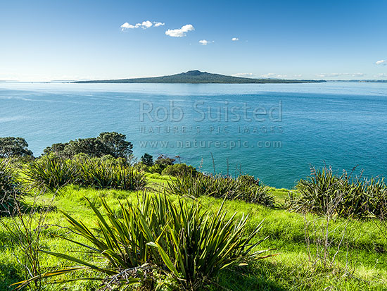 Rangitoto Island in the Hauraki Gulf, seen from North Head Historic Reserve, Cheltenham, Auckland City District, Auckland Region, New Zealand (NZ) stock photo.