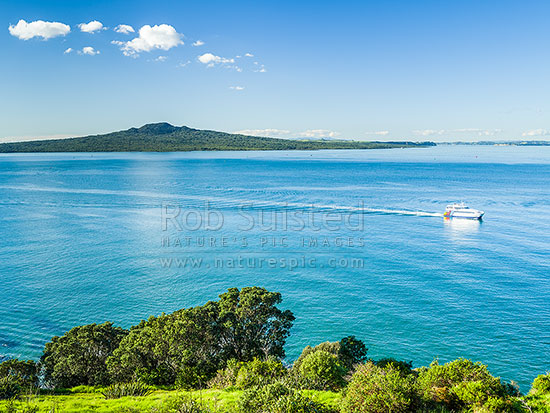Rangitoto Island Scenic Reserve in the Hauraki Gulf, seen from North Head Historic Reserve, with passing Fullers Ferry returning from outer islands, Cheltenham, Auckland City District, Auckland Region, New Zealand (NZ) stock photo.