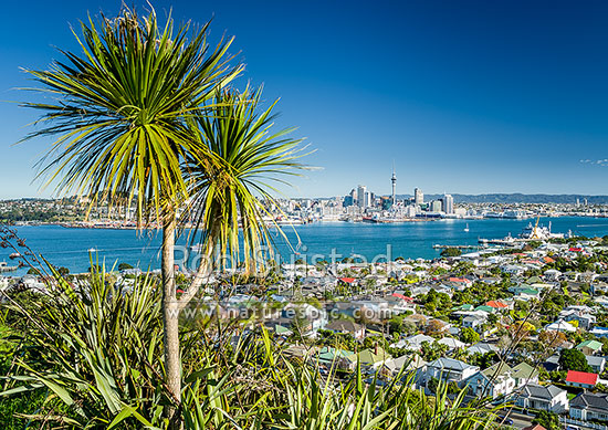 Waitemata Harbour, City, Sky Tower and Naval Base, seen from North Head Historic Reserve, Devonport, North Shore City District, Auckland Region, New Zealand (NZ) stock photo.
