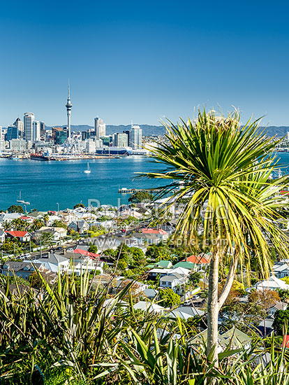 Waitemata Harbour, City CBD, and Sky Tower, seen from North Head Historic Reserve, Devonport, North Shore City District, Auckland Region, New Zealand (NZ) stock photo.