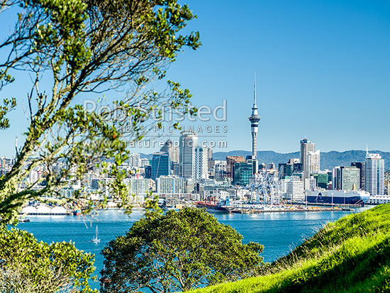 Auckland City CBD, Port, and Sky Tower, seen from North Head, across the Waitemata Harbour, Devonport, North Shore City District, Auckland Region, New Zealand (NZ) stock photo.