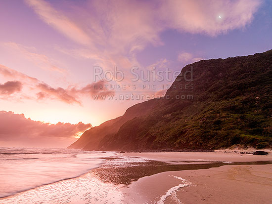 Maunganui Bluff and crescent moon above Aranga Beach, on a moody evening. Wild north island west coast, Aranga Beach, Manganui Bluff, Kaipara District, Northland Region, New Zealand (NZ) stock photo.