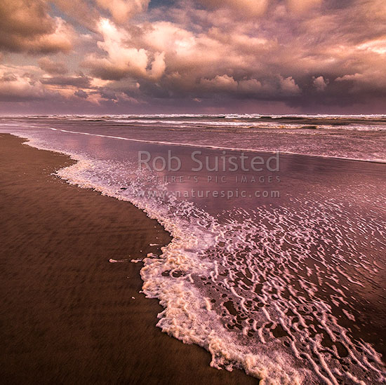 Wild west coast beach on a very moody evening with wind blown sea foam and brooding clouds. Square format, Aranga Beach, Manganui Bluff, Kaipara District, Northland Region, New Zealand (NZ) stock photo.