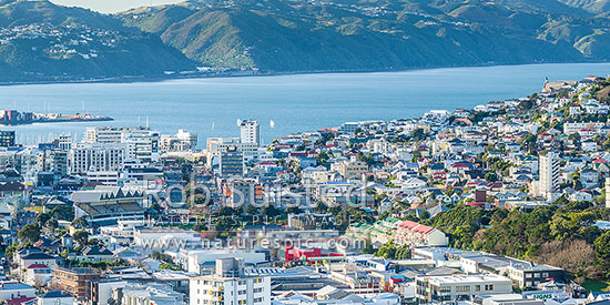 Wellington inner city looking over basin reserve down for 291 the terrace wellington new zealand