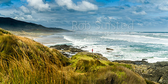 Mitimiti Beach, on the wild west coast, lookng south from Moerewa Point toward Mitimiti. Panorama, Mitimiti, Far North District, Northland Region, New Zealand (NZ) stock photo.
