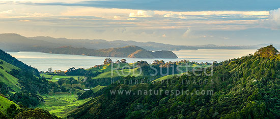 Awhitu farmland, looking over Wattle Bay and Manukau Harbour, to Cornwallis Peninsula and West Auckland to Auckland City distant right, Awhitu Peninsula, Papakura District, Auckland Region, New Zealand (NZ) stock photo.