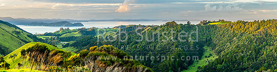 Awhitu Peninsula, looking towards Manukau Harbour with Wattle Bay and Cornwallis Peninsula at left, Auckland City distant centre. Panorama, Awhitu Peninsula, Papakura District, Auckland Region, New Zealand (NZ) stock photo.