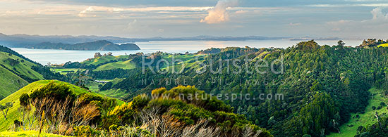 Awhitu Peninsula, looking towards Manukau Harbour with Wattle Bay and Cornwallis Peninsula at left, Auckland City and Sky Tower visible centre distance. Panorama, Awhitu Peninsula, Papakura District, Auckland Region, New Zealand (NZ) stock photo.
