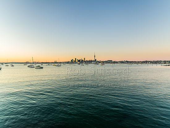 Auckland City Skyline, CBD, and moored sailboats, seen from across the Waitemata Harbour on a calm morning, Auckland, Auckland City District, Auckland Region, New Zealand (NZ) stock photo.