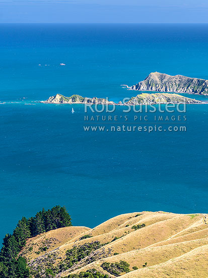 Sailboat passing Le Brun Peninsula and Hautai Island, off D'Urville Island. Tasman Bay and Tapuareroutuutu Rocks beyond, French Pass, Marlborough Sounds, Marlborough District, Marlborough Region, New Zealand (NZ) stock photo.