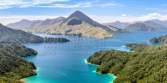 Savill Bay and Fitzroy Bay in Pelorus Sound, Marlborough Sounds. Game Point and Mt Shewell (775m) above. Maud Island far right. Panorama, Marlborough Sounds, Marlborough District, Marlborough Region, New Zealand (NZ) stock photo.