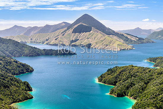 Savill Bay and Fitzroy Bay in Pelorus Sound, Marlborough Sounds. Game Point and Mt Shewell (775m) above, Marlborough Sounds, Marlborough District, Marlborough Region, New Zealand (NZ) stock photo.