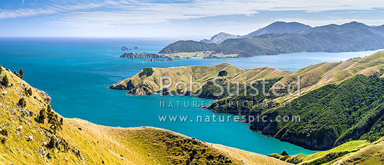 Okuri Bay, French Pass, with D'Urville Island and Tasman Bay behind. Panorama, French Pass, Marlborough Sounds, Marlborough District, Marlborough Region, New Zealand (NZ) stock photo.