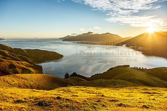 Admiralty Bay sunrise in the Marlborough Sounds. Deep Bay in foreground, Turner Peak (683m) centre, sunrising behind Cone Peak (565m), French Pass, Marlborough Sounds, Marlborough District, Marlborough Region, New Zealand (NZ) stock photo.