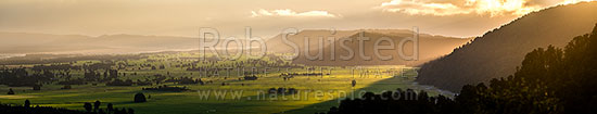 Cook River (Weheka) Flats, farmland and rainforest edge in the last evening light under skies clearing under breaking weather. Wide panorama, Fox Glacier, South Westland, Westland District, West Coast Region, New Zealand (NZ) stock photo.