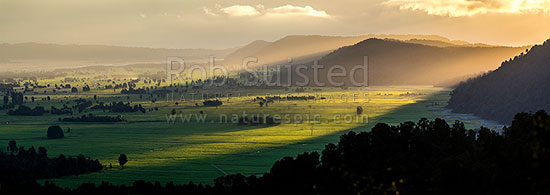 Cook River Flats (Weheka) farmland and rainforest with the last golden light of the day. Clearwater River far right. Panorama, Fox Glacier, South Westland, Westland District, West Coast Region, New Zealand (NZ) stock photo.